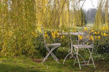 Enjoy this picturesque part of the outside space with table and chairs amongst the willow trees.